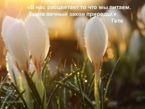 imeg_20
