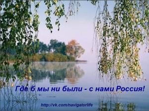 imeg_65