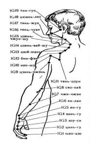 Меридиан тонкой кишки