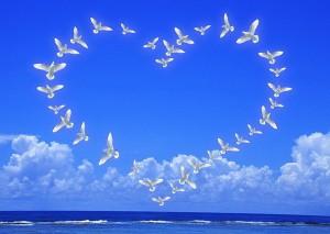 Любовь и благодарность
