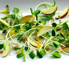 Биогенная еда