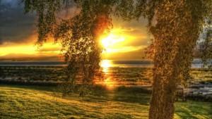 Восход солнца_1